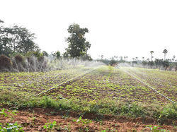 Spray Irrigation System