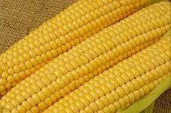 A Grade Frozen Sweet Corn, Maharashtra, Packaging Type: Plastic Bag