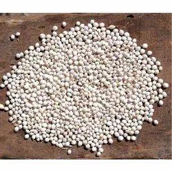 Fodder Jowar Seeds
