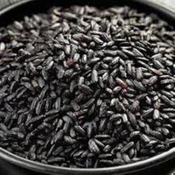 Black Rice Seed, For Agriculture, Packaging Type: PP Bag