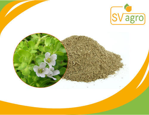 SV Agro Bacopa Monnieri Extract, Packaging Type: PP Polybags, HDPE Drums