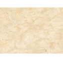 Vishwas Ceramica 1012 Ve Floor Tiles, Size: 800 X 800mm