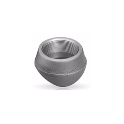 Stainless Steel Threadolet