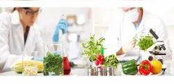 GMO Testing Services