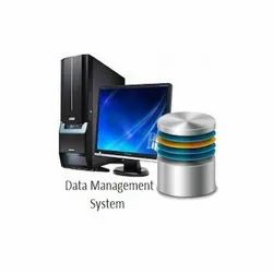 Database Management and Maintenance Service
