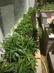 Roof Terrace podium Garden