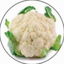 Cauliflower Grop Advisory Service