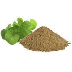 Baramasi Leaves Powder