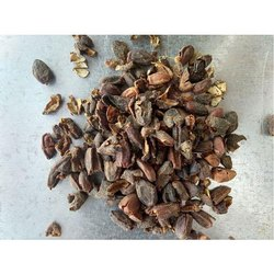 Dried Neem Fruit husk, Packaging Size: 10 Kg And 50 Kg, Packaging Type: Pp And Sack Bag