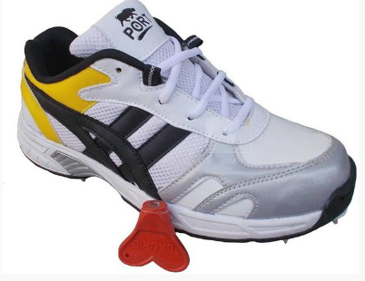 269dbf53f46a Port Full Spike Cricket Shoes at Rs 1899