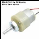 300 RPM 12v DC Center Shaft Gear Motor