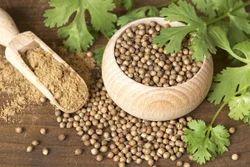 Organic Coriander Seed/POWDER