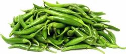 20 kg Green Chilly