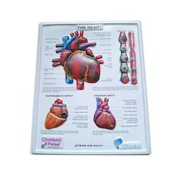 PVC Embossed Poster