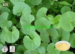 Centella Extract 30% Triterpene