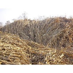 Agriculture Wastes