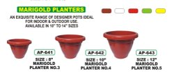Marigold Planter