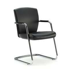 Visitor Exclusive Leather Chair