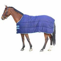 Horse Under Rug