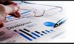 Web Application & CMS Development Services