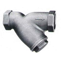 Pipe Fitting Strainer
