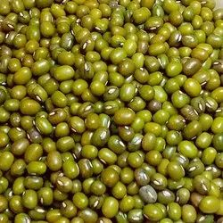 Whole Green Moong Dal, High in Protein, Packaging Size: 50 Kg