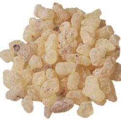 Organic Copal Resin Oil (Frankincense Essential Oil)