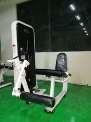 Fitcare Leg Extension Equipment, for Gym and Office