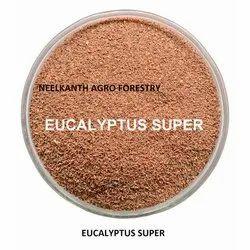 Eucalyptus Super Seed