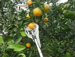 Telescopic Fruit Picker