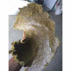 Shiv Bhole Feed Grade Maize Oil Cake