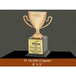 8x3 Inches Copper Acrylic Trophies