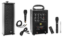40 Watts Portable System Cordless Mike, Echo, Bluetooth, Usb, Recording With 1 External Speaker