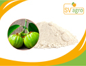 Natural Garcinia Cambogia Extract