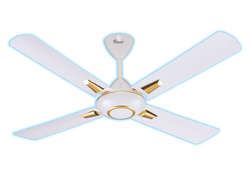 Mari Gold Ceiling Fan White