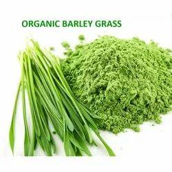 Ambe Natural Organic Barley Grass Powder (Hordeum Vulgare), 25 Kg Hdpe Drum, Non prescription