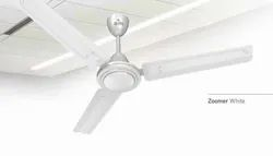 Zoomer White Ceiling Fan