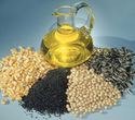 Fresh Oil Seeds