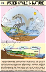 Water Cycle In Nature For Geography Chart
