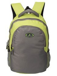 Light Green & Light Grey Phoenix Trendy Casual Backpack Bag