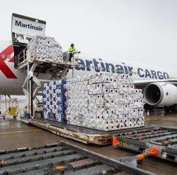 Export Air Freight Dangerous Goods Perishable Cargo