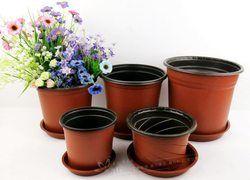 Nursery Pot- Colour