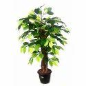 Ficus Benjamin Artificial Plant