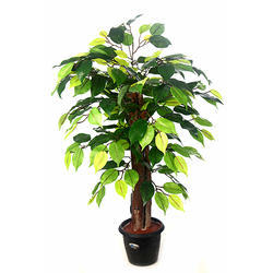 Artificial Ficus Plant N.Stick