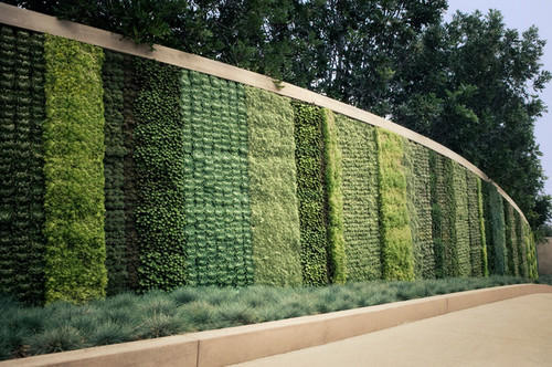 Vertical Green Outdoor Wall Garden