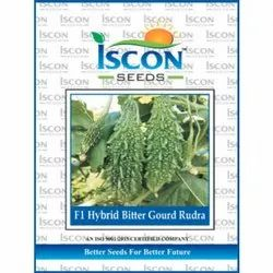 Iscon F1 Hybrid Bitter Gourd Rudra Seed, Packaging Type: Packet, Packaging Size: 500g