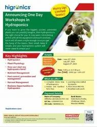 Hydroponics Workshop Services