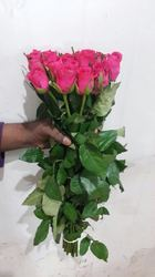 Stem Rose Red Color Bunch