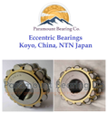 200752307 Eccentric Bearing