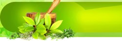 Ayurvedic PCD Pharma Francise For Chhattisgarh